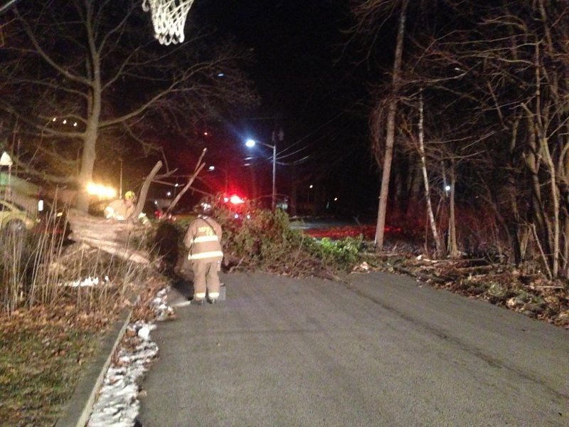 High Winds Cause Large Tree To Block Roadway