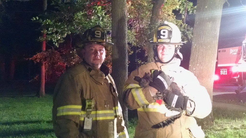 Crews from Engine 921 and Ladder 926 Rescue Cat Stuck Up A Tree